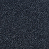 Coronet Active Family Exalted Blue River Textured Indoor Carpet