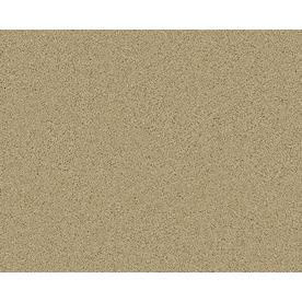 Coronet Active Family Exalted Laguna Textured Indoor Carpet