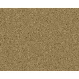 Coronet Active Family Exalted Overland Textured Indoor Carpet