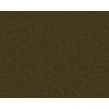 Coronet Active Family Exalted Sagewood Textured Indoor Carpet
