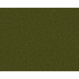 Coronet Active Family Exalted Hillside Textured Indoor Carpet