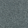Coronet Active Family Exalted Capstone Textured Indoor Carpet