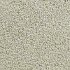Coronet Active Family Exhilarated Dazed Textured Indoor Carpet