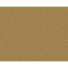 Coronet Active Family Exhilarated Ironwood Textured Indoor Carpet