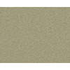 Coronet Active Family Exhilarated Greenfield Textured Indoor Carpet