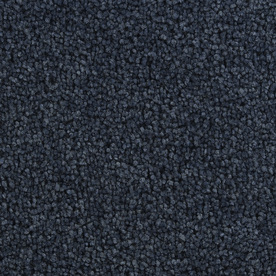 Coronet Active Family Exhilarated Blue River Textured Indoor Carpet