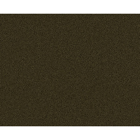 Coronet Active Family Exhilarated Sycamore Textured Indoor Carpet