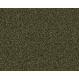 Coronet Active Family Exhilarated Midway Textured Indoor Carpet