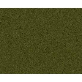 Coronet Active Family Exhilarated Hillside Textured Indoor Carpet