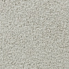 Coronet Active Family Euphoria II Opulent Textured Indoor Carpet