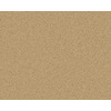 Coronet Active Family Euphoria II Mojave Textured Indoor Carpet