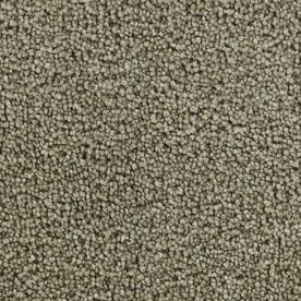 Coronet Active Family Euphoria II Spurlock Textured Indoor Carpet