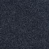 Coronet Active Family Euphoria II Blue River Textured Indoor Carpet