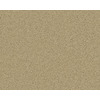 Coronet Active Family Euphoria II Laguna Textured Indoor Carpet
