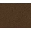 Coronet Active Family Euphoria II Summit Textured Indoor Carpet