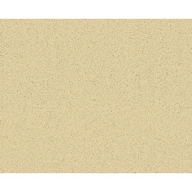 Coronet Active Family Exalted Kino Textured Indoor Carpet