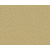 Coronet Active Family Exalted Legend Textured Indoor Carpet