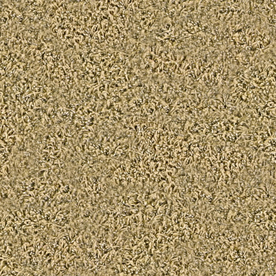 Coronet Stock Carpet Spicewood Frieze Indoor Carpet