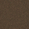 Coronet Sterling Truffle Commercial Loop Indoor Carpet