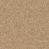 Coronet Branson Cornerstone Textured Indoor Carpet