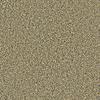 Coronet Simple Select Newport Textured Indoor Carpet