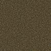 Coronet Simple Select Nantucket Textured Indoor Carpet