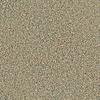 Coronet Simple Select Melbourne Textured Indoor Carpet