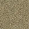 Coronet Simple Select Maison Textured Indoor Carpet