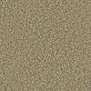 Coronet Simple Select Newport Textured Indoor Carpet