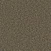 Coronet Simple Select Phoenix Textured Indoor Carpet