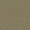 Coronet Simple Select Aspen Textured Indoor Carpet