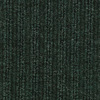 Coronet Outdoor Living Grassy Plains Berber Indoor/Outdoor Carpet