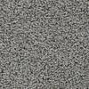 Coronet Cornerstone Flair Berber Indoor Carpet