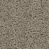 Coronet Cornerstone Success Berber Indoor Carpet