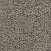 Coronet Cornerstone Experience Berber Indoor Carpet