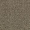 Coronet Cornerstone Determined Berber Indoor Carpet