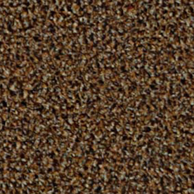 Shop Top Sail Almond Indoor Outdoor Carpet At Lowes Com