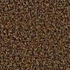 Coronet Stock Carpet Almond Berber Indoor/Outdoor Carpet