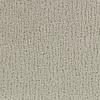 Coronet Cornerstone Proper Textured Indoor Carpet