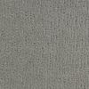 Coronet Cornerstone Dutiful Berber Indoor Carpet