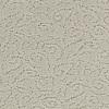 Coronet Trustworthy Proper Berber Indoor Carpet
