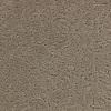 Coronet Trustworthy Precise Berber Indoor Carpet