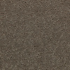 Coronet Trustworthy Swell Berber Indoor Carpet