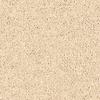 Coronet Cornerstone Standard Berber Indoor Carpet