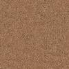 Coronet Cornerstone Foundation Textured Indoor Carpet