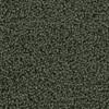 Coronet Cornerstone Principle Textured Indoor Carpet