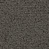Coronet Cornerstone Illustration Textured Indoor Carpet