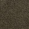 Coronet Cornerstone Symbol Textured Indoor Carpet