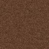 Coronet Cornerstone Precursor Textured Indoor Carpet