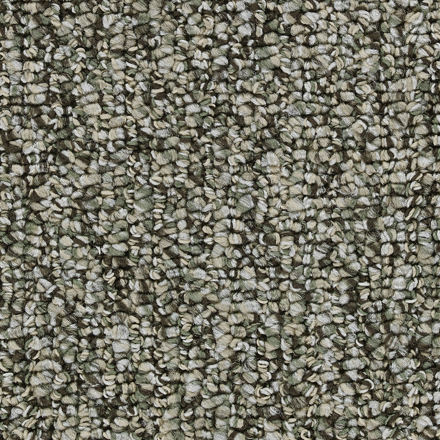 lowes instock carpet - 28 images - shop stainmaster ...